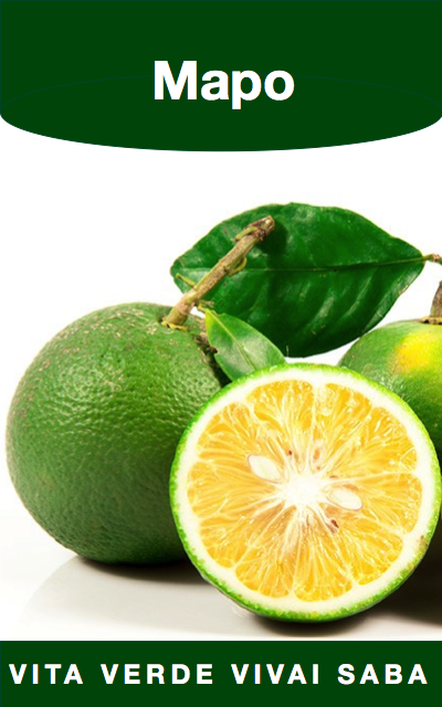 Mapo vita verde vivai for Mapo frutto